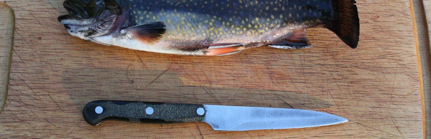 """rainbow trout 80339 1920 e1592829084545 1488x480 - Zestaw grillowy """"Towarzyska Rybka"""""""