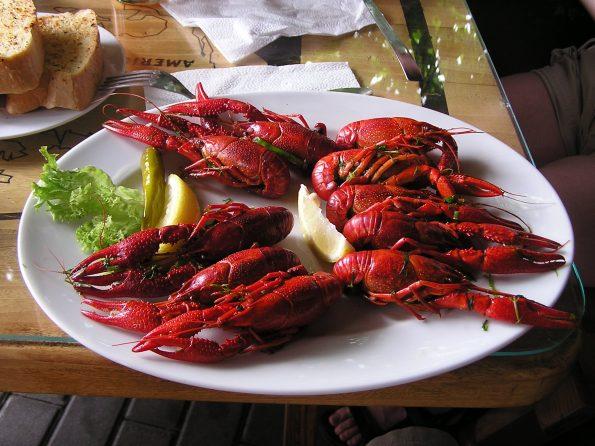 boiled crayfish 749555 595x446 - Wokół stołu - jak to ugryźć - raki, owoce morza, kawior