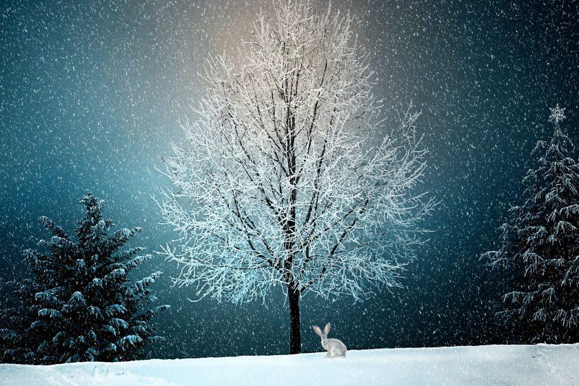 winter 2896970 840x560 - Boże Narodzenie - wierzenia i tradycje