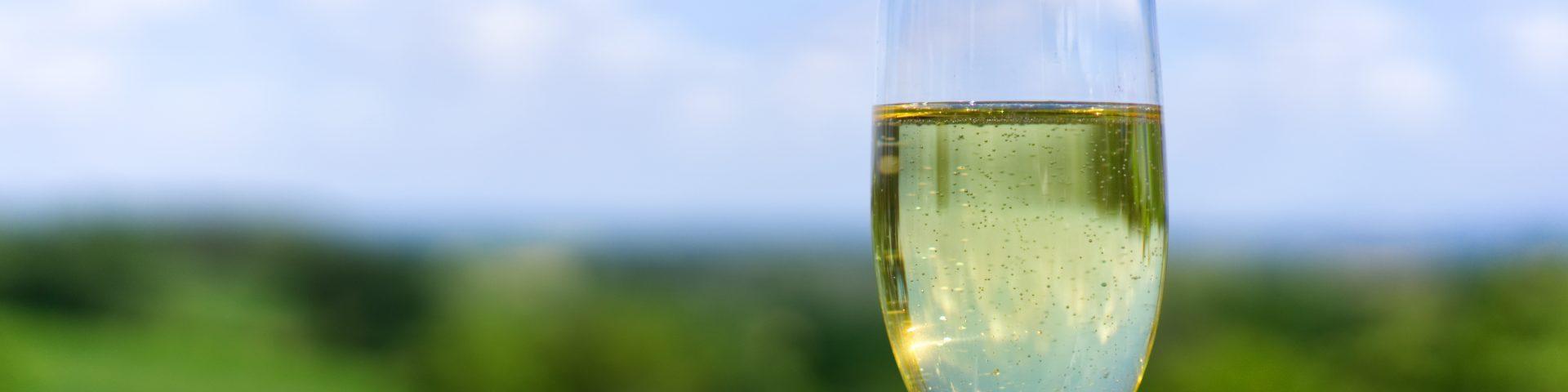 champagne 3599797 1920x480 - Moje ulubione polskie wina musujące