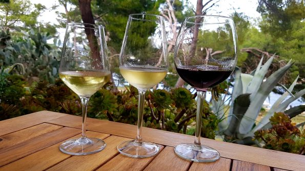 20190611 190537 1 595x335 - Katamaranem po winnicach Dalmacji